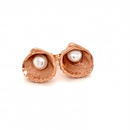 Shell earrings with pin and fresh water pearl from...